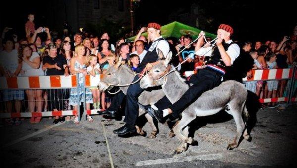 Tribunj závody oslů
