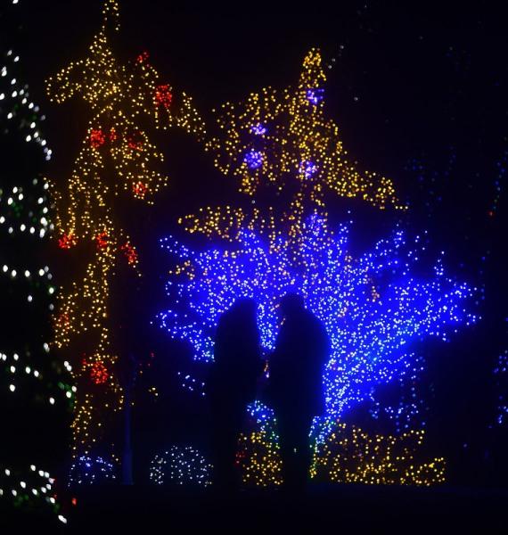 Vánoční pohádka v Chorvatsku z milionů žárovek