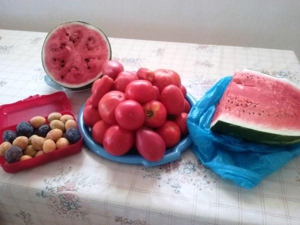 chorvatské ovoce a zelenina