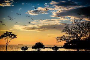 Umag_západ slunce