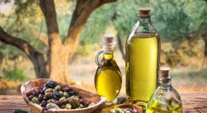 olivový olej istrie